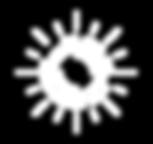 shine icon.png