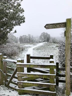 Hadrian's Wall Path at Garthside