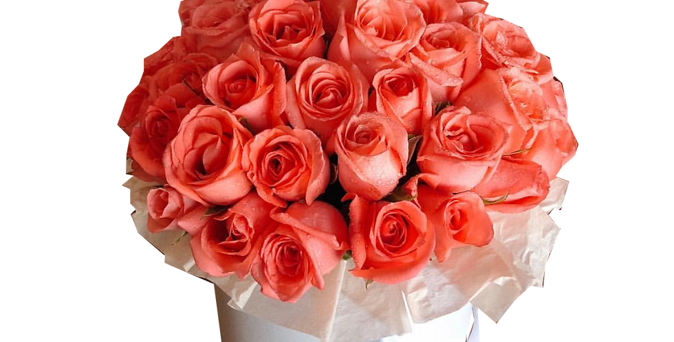 40 Coral Roses in a Box
