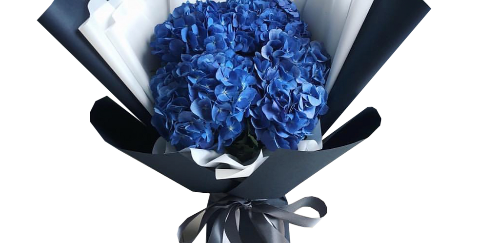 5 Dark Blue Hydrangeas