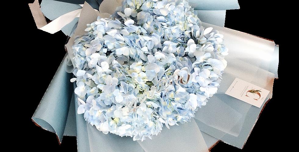 Large Blue Hydrangeas