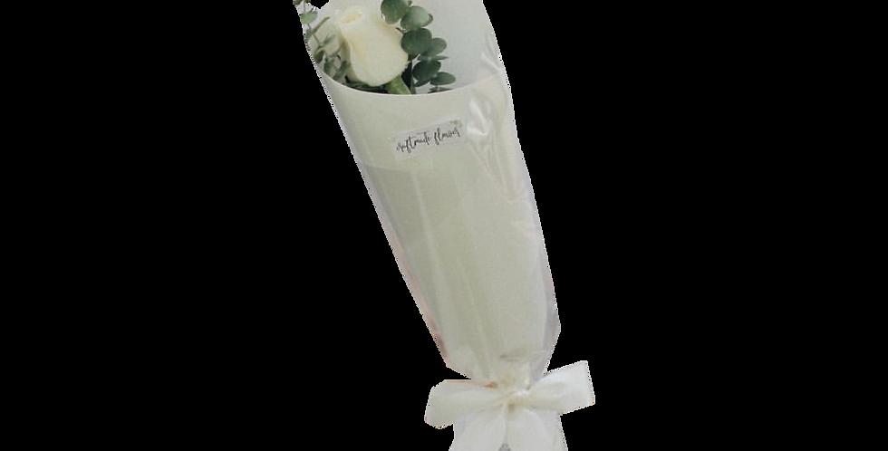 White Day Single Rose