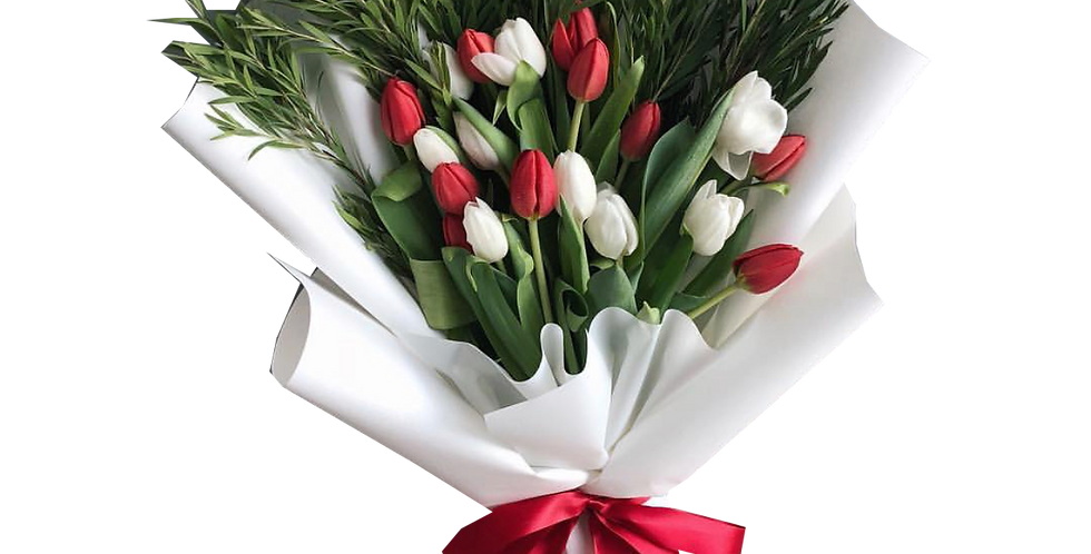 20 White & Red Tulips