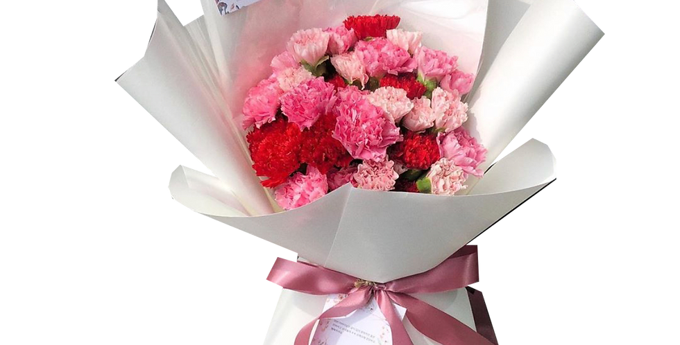 Pink Tone Carnations