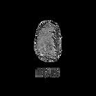 nous-logo.png