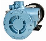 PL100 LPG Dsipenser Pump.PNG