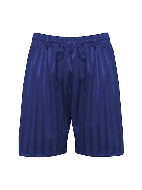 Navy Shadow Striped Shorts