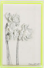 Neon Yellow Daffodils