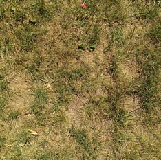 Стара трава 3840x2160