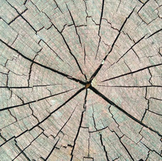 Log cut 3840x2160