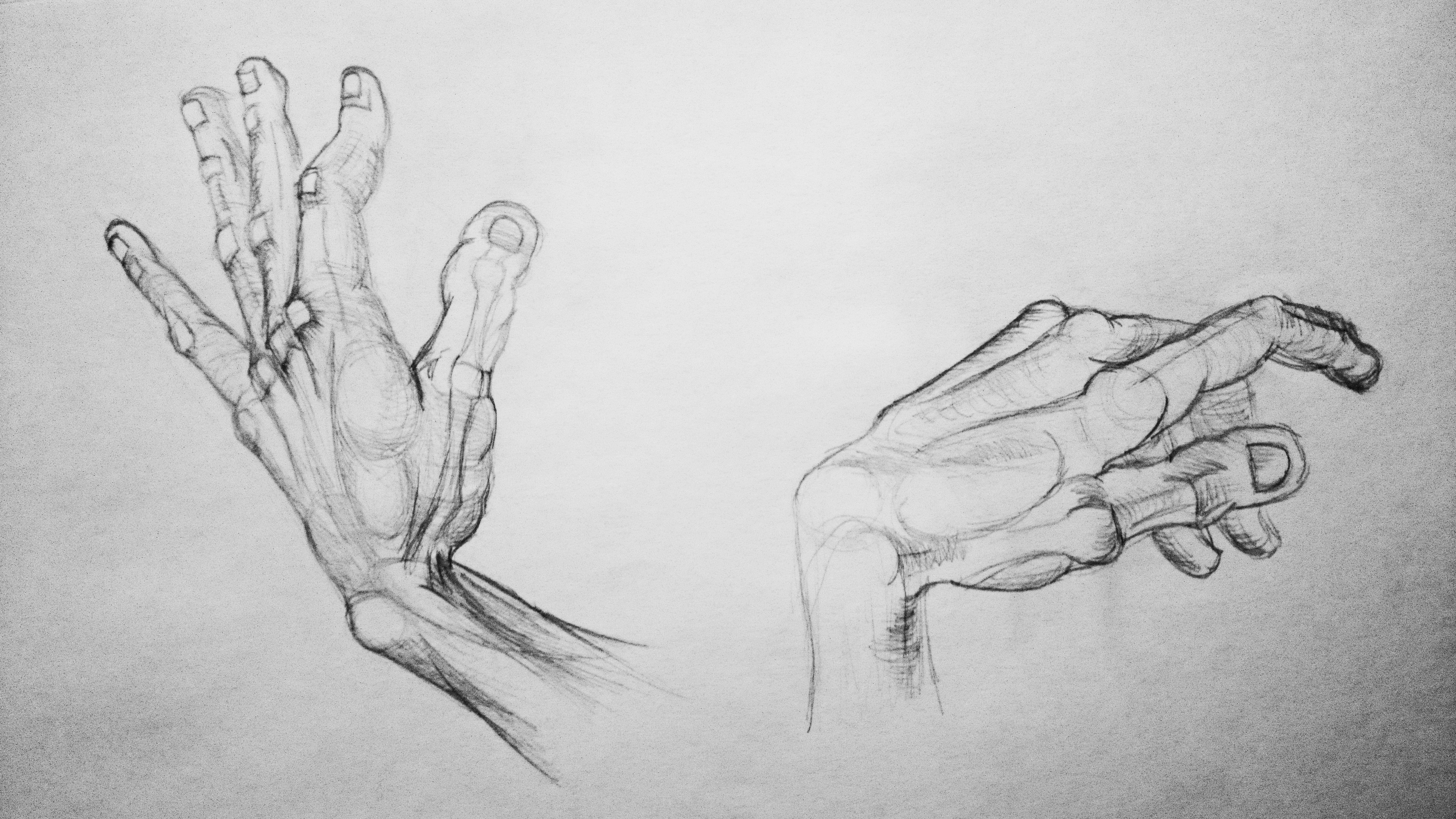 Body parts: hands