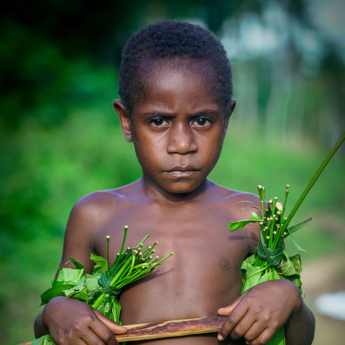 A child from the village of Dio harvesting greens from the bush - Green River, Papua New Guinea