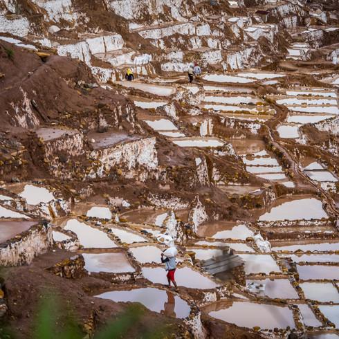 A local man harvests salt from the Maras salt mines - Maras, Peru