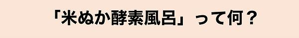 米ぬか説明.png