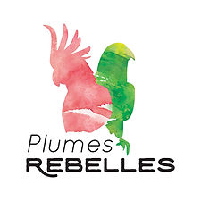 2_PR_logo_OFFICIEL_couleurs_400x400pixel
