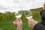 Valley Wine Tours for Google Ad - 2.jpg
