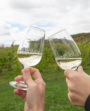 Valley Wine Tours-4.jpg