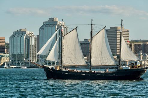 Tall Ship Silva | Halifax, Nova Scotia