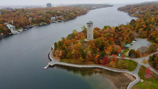 Sir Sanford Flemming Park foliage | Halifax, Nova Scotia