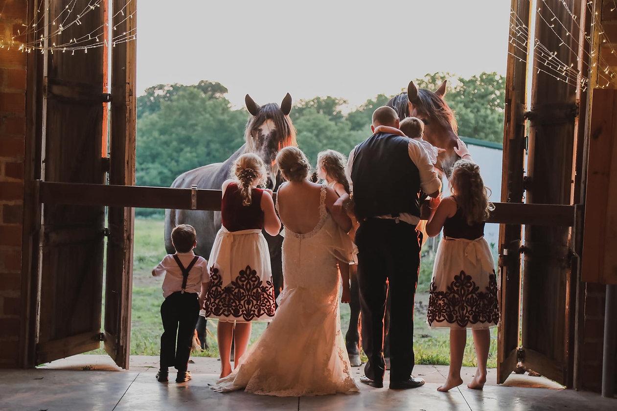 Horses Knob Hill barn .jpg