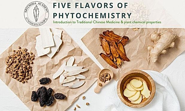 3 - Five Flavors of Phytochemestry.jpg