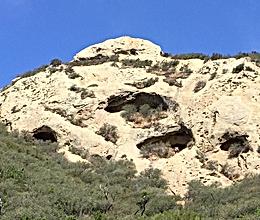 BLANK Gaviota Wind Caves Herb Walk - 50%