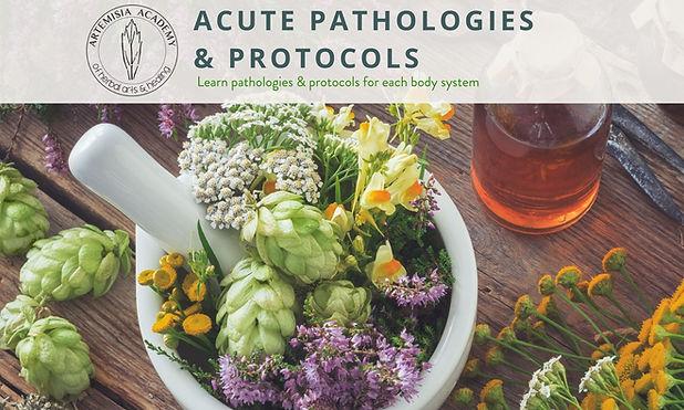 1 - Accute Pathologies & Protocols.jpg
