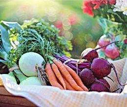 3 - Herbal Nutrition.jpg
