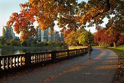 Morning Jog, Stanley Park, Vancouver.jpg