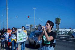 Manifestações
