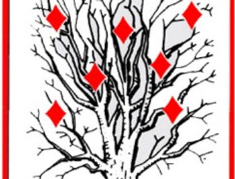 Tree of Diamonds Cards by Royal Magic