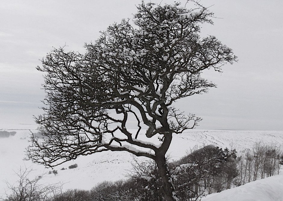 Folklore of the Yorkshire Moors