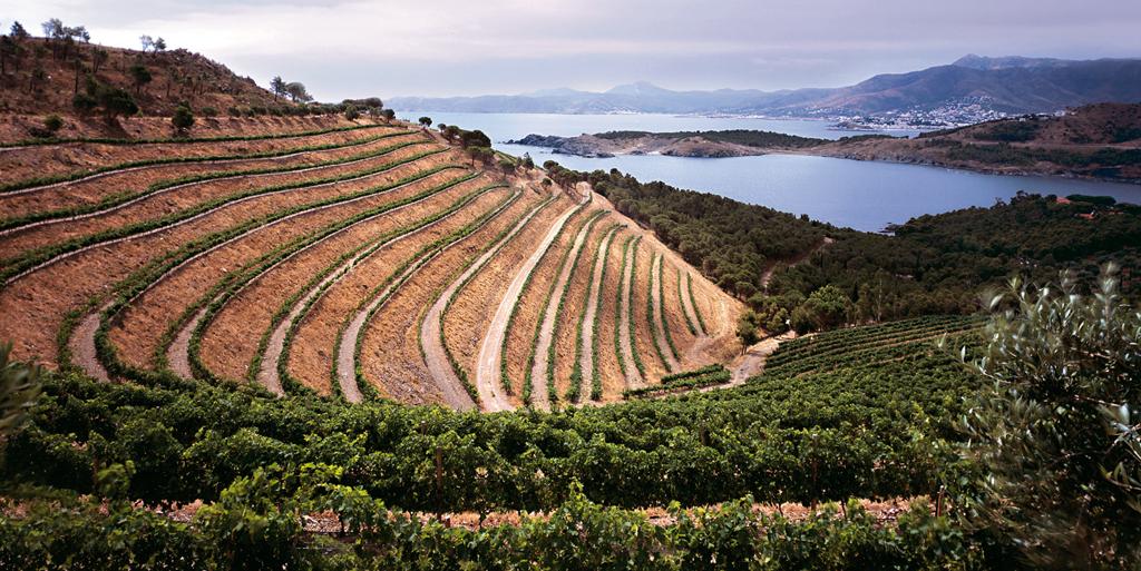 Ruta de los vinos D.O. Empordà