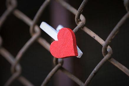 red-heart-5583920_960_720.jpg