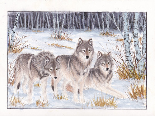 3 Wolves