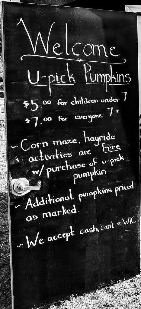Pumpkin Patch and Corn Maze Prices