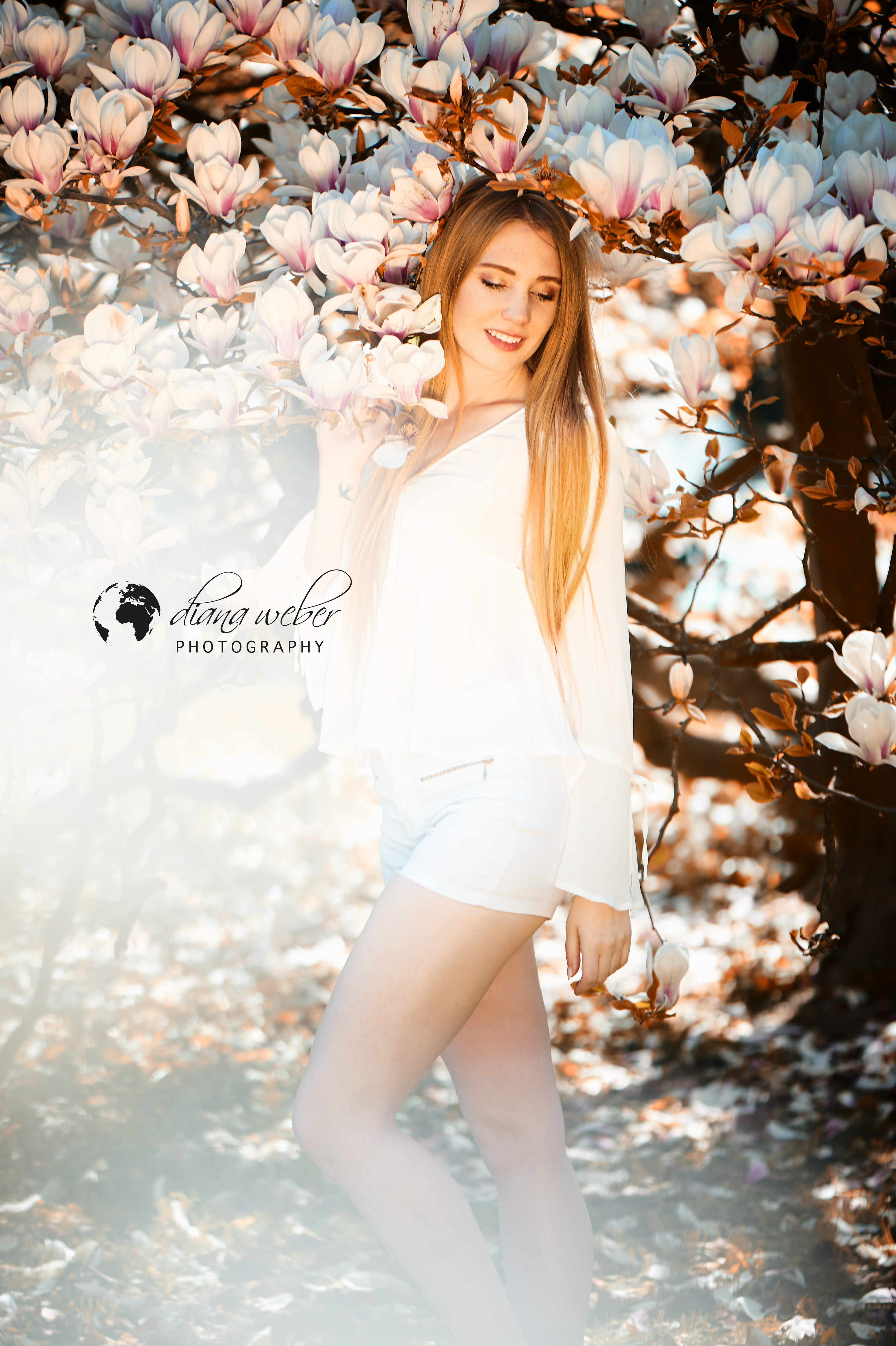 Spring_beauty