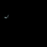logo ozomatli 2.png