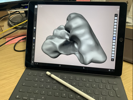 Using Forger (iPad)