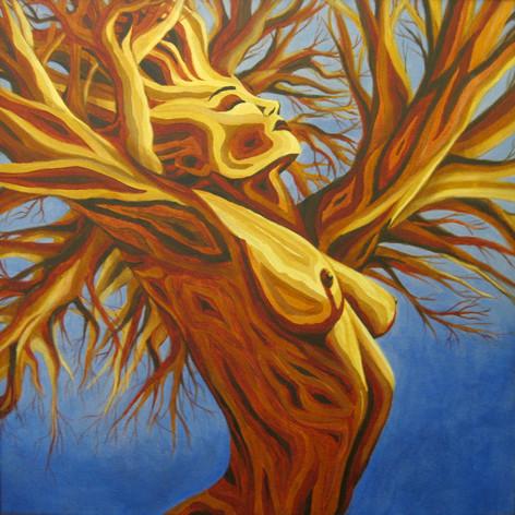 Arbored Enamored