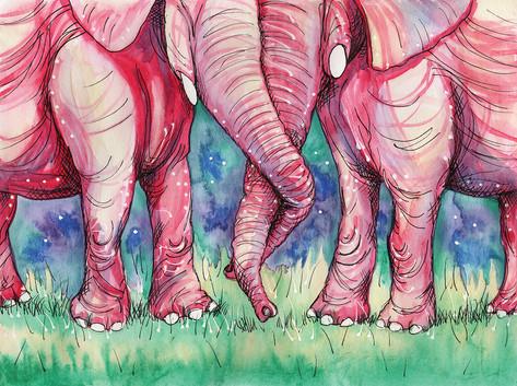 Pink Elephant Love