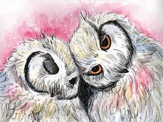 Pink Owl Snuggles