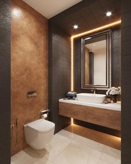 Bathroom-Visualization