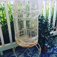 Vintage White Bird Cage
