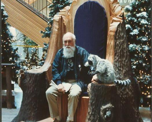 Woodland Santa Throne