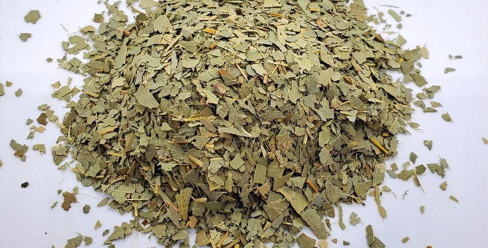 Eucalyptus (Eucalyptus Globulus)-Bulk Herb
