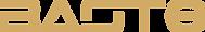 Neus Logo.png