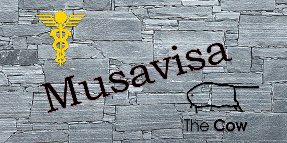 Musavisa