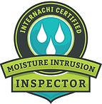 Home Inspections, home inspector, condo inspections, certified home inspector, WETT inspection, WETT certified, fireplace, wood stove, pellet stove, thermal imaging, mold, mould
