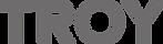 troy-logotype-horizontal.png